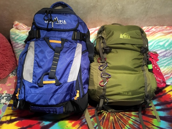 Two backpacks