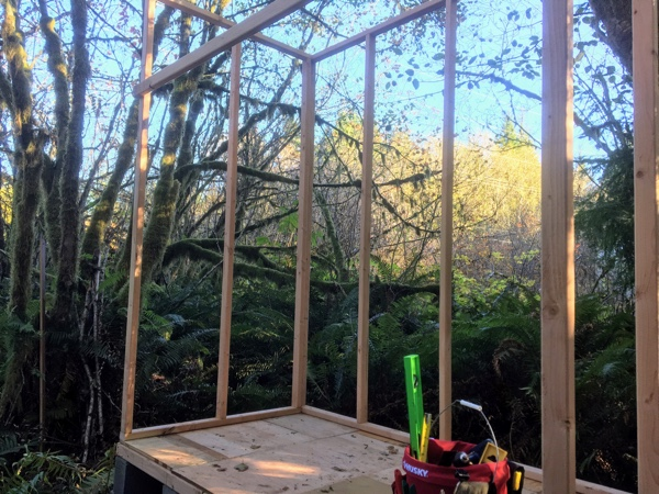 Floor done, three walls framed. It's starting to look like a shed!